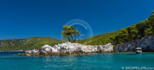 سواحل اسکوپلوس ، ساحل ارمنوپترا ، برای کشف ، وبلاگ های Skopelos