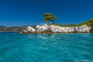 amarandos beach, the three trees beach, skopelos beaches