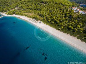 Skopelos Beaches, Milia Beach