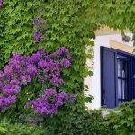 Skopelos Adrina Beach Hotel-foto