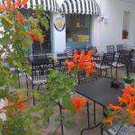 Skopelos M ყავის აგნოსტა