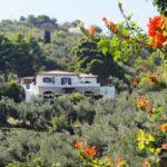 Skopelos villa kamares