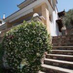 Skopelos niki -huoneistot panormot