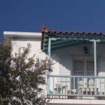 Skopelos regina studios panormos