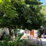 Skopelos landsby Elli stafylos