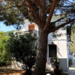 Skopelos vila elli stafylos