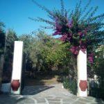 Skopelos yades panormos