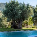 Vile Skopelos orion stargaze