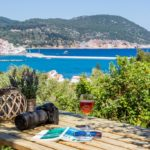 Skopelos olive grove apartment