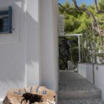 Skopelosプールvilanefeli