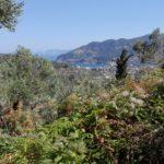Trekingová turistika Skopelos